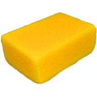 Sprehn murersvamp gul