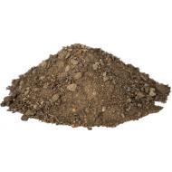 Champost Allétræs muld